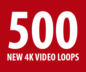 4K Motion Graphics